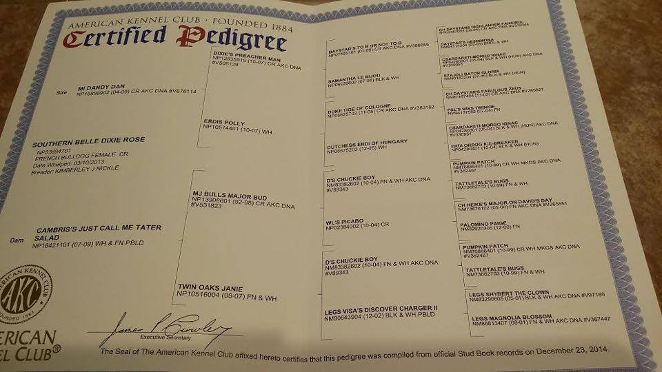 click picture for larger view of Dixie's Pedigree